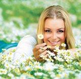 O floare miraculoasă: Muşeţelul