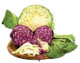 Alimentaţia anti-cancer: VARZA