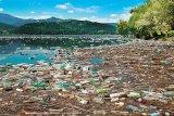 Ce bilanţ ecologic aveţi?