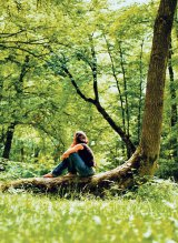 MEDICINA VIITORULUI - Pădurea vă aşteaptă!