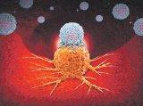 Un tratament revoluţionar anticancer - Terapia imuno-oncologică