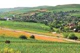 ŞANDORICĂ din Câmpia Transilvaniei