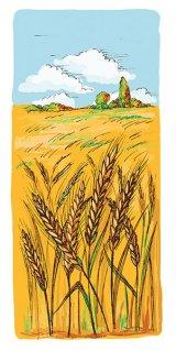 Metode naturale de vindecare a cancerului - Cerealele