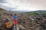 Dezastru în parcurile naţionale din România