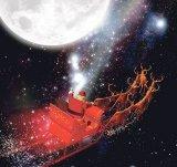 Crăciunul în fel si chip
