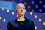 Călătorie în fascinanta lume a roboţilor