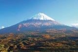 JAPONIA - Pactul de sinucidere
