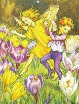 Sunetele şi mişcările primăverii