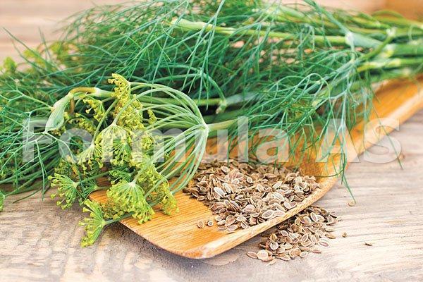 Decoct de pătrunjel cu vene varicoase