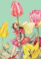Se spune că MAI este luna florilor. Aveţi preferinţe? Care dintre ele vi se pare cea mai frumoasă?