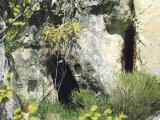 Sihaştrii din Valea Chiliilor