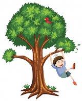 """Pe stradă cu """"Formula AS"""" - Aveţi amintiri legate de un copac?"""