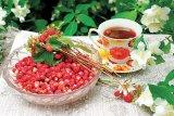 Fructele roşii de pădure - FRAGII şi COACĂZELE