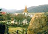 Un preot pentru eternitate: Nicolae Floroiu
