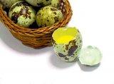 Remedii cu oua de prepelita