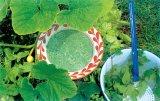 Sanatate Cu Frunze Verzi