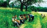 O oferta de sanatate si fericire: Drumetiile in natura