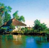 Vesti bune din Delta Dunarii