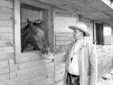 Pensiunea cu cai multi