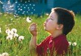 In prag de primavara, despre: Alergii