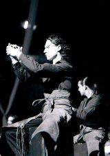 Febra Flamenco, intr-un aprilie friguros