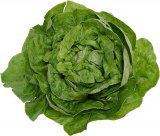 Salata verde si leusteanul