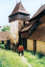 Charles of Transilvania