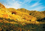 Un paradis profanat: Rezervatia naturala din Muntii Macinului