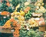 Alimentatia vegetariana
