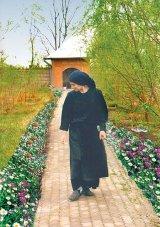 Parintele Pantelimon - preotul albinelor de la Ghighiu