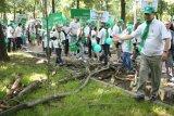 Copacii din Bucuresti - numarati ca sa fie taiati?