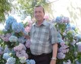 Un prim ajutor in bolile venelor: Stelian Chivu
