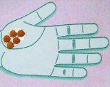 Tratamente cu seminte