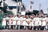 Nanasa satului