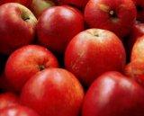 Fineturi cu mere