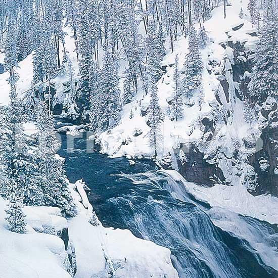 Tratamentul articular cu gheata de zăpadă, Știința Arcadia