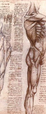 Leonardo da Vinci si