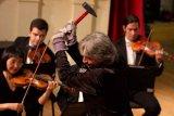 Cum s-a inzapezit Johann Strauss