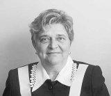 Rosia Montana, aparata de profesorii de la ASE
