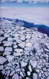 Incalzirea climei: fabulatie sau adevar?