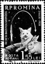 Odiseea spatiala a cainilor-cosmonauti