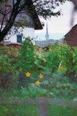 Pe urmele celtilor, la Sapanta - Drumul lung catre Cimitirul vesel