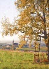 Leacuri din Tirol (III)