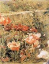 Taramul Florilor * Leac pentru inima, in culori