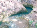 Apa cea minunata de la Manastirea Izbuc