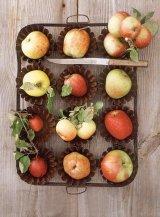 Fructele de aur ale sanatatii: MERELE