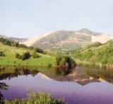 Marea pacaleala de la Rosia Montana