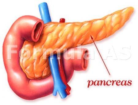 cum să îndepărtați grăsimea din pancreasul dvs