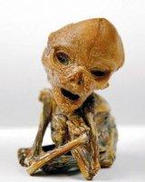 PITICII - extraterestri sau specie umana?